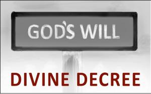 하나님의 작정(divine decree)